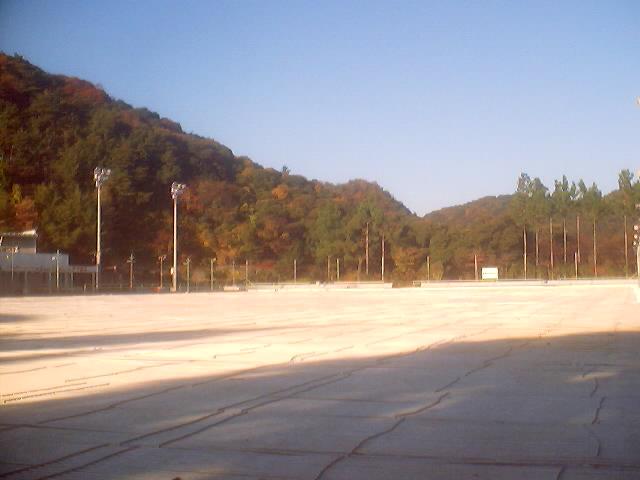 skate2_0001
